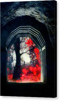 A Touch Of Red Canvas Print by Tara Turner