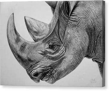 Rhinoceros - A Peaceful Giant Canvas Print