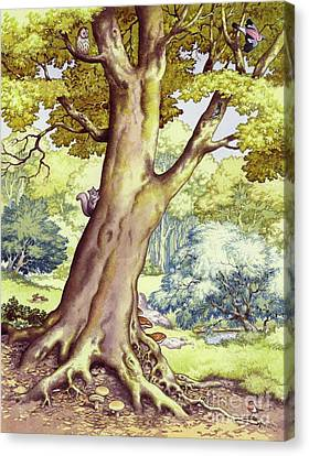 A Tree Full Of Wildlife Canvas Print by Pat Nicolle