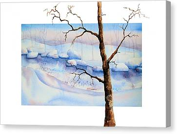 A Tree In Another Dimension Canvas Print by Debbie Lewis