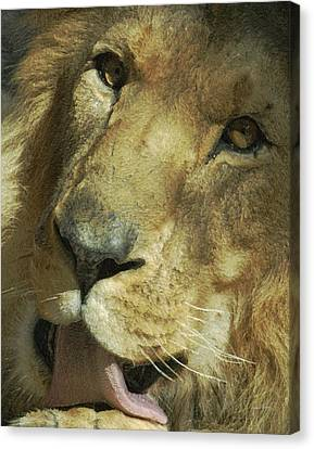 A Tribute To Elson 3 Canvas Print by Ernie Echols