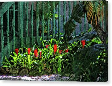 A Tropical Florida Landscape Canvas Print by HH Photography of Florida
