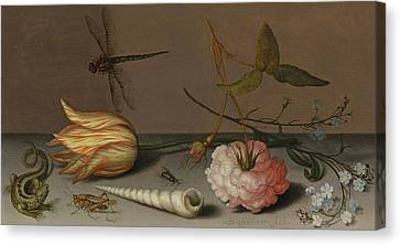 A Tulip, A Carnation, Spray Of Forget-me-nots, With A Shell, A Lizard And A Grasshopper, On A Ledge Canvas Print by Balthasar van der Ast