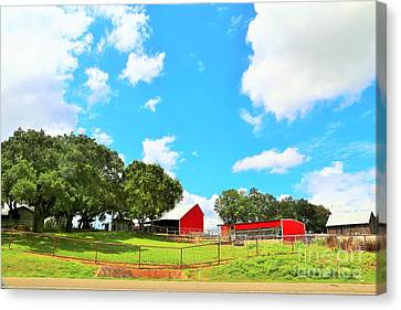 A View In The Hill Country Canvas Print by Jeff Downs