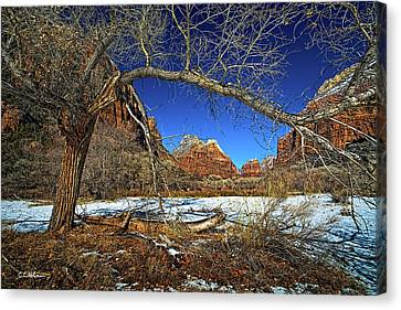 A View In Zion Canvas Print by Christopher Holmes