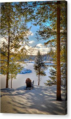 A View Of The Moose Canvas Print by David Patterson