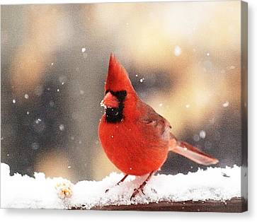 A Visit From Mr Chip In Winter Canvas Print by Dorothy Lee