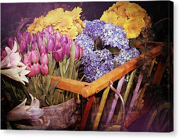 A Wagon Full Of Spring Canvas Print by Patrice Zinck
