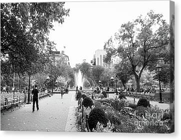 Canvas Print featuring the photograph A Walk In The Park by Ana V Ramirez