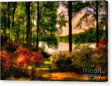 A Walk In The Park Canvas Print by Lois Bryan