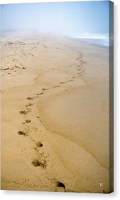 Canvas Print featuring the photograph A Walk On The Beach by Tom Romeo