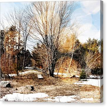 A Walk Through The Park Canvas Print by Marcia Lee Jones