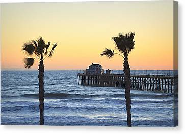Canvas Print featuring the photograph A Warmer Place To Be by AJ Schibig