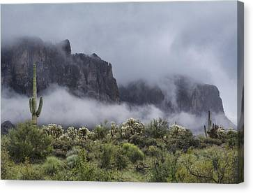A Wave Of Fog On The Superstitions  Canvas Print
