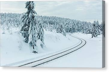A Way In The Magic Winter Wonderland Canvas Print by Andreas Levi