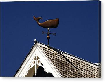A Whale Of A House Canvas Print by David Lee Thompson