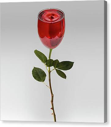 Red Wine Splash Canvas Print - A Whole Lot Of Rose by Paul Madden