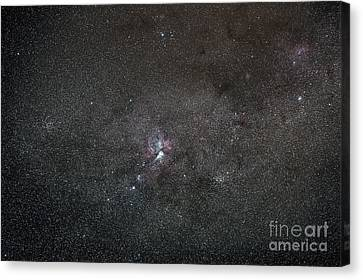 A Wide Field View Centered On The Eta Canvas Print by Luis Argerich