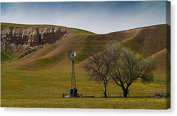 A Windmill And Wildflowers Canvas Print