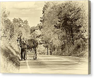 A Windy Day Sepia Canvas Print