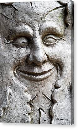 A Wink And A Smile Canvas Print by Christopher Holmes