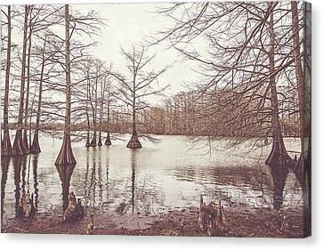 A Winter Afternoon On Lake Providence Canvas Print by Scott Pellegrin