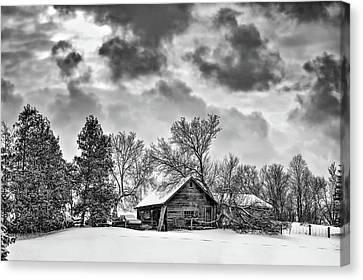 A Winter Sky Monochrome Canvas Print by Steve Harrington