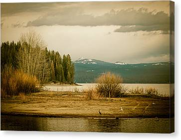 A Winter's Idyll Canvas Print