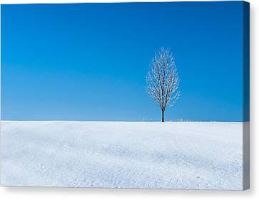Morn Canvas Print - A Winter's Landmark by Todd Klassy