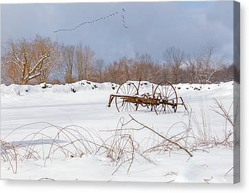 A Winters Morning 2016 Canvas Print by Bill Wakeley