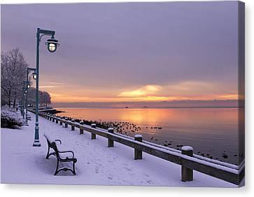 A Winter's Stroll Canvas Print