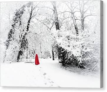 A Winter's Walk Canvas Print by Jessica Jenney