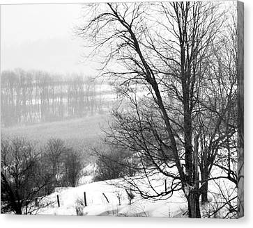 A Wintry Day Canvas Print by Gerlinde Keating - Galleria GK Keating Associates Inc