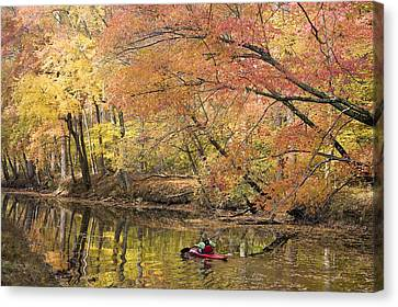 A Woman Kayaking Down The Chesapeake Canvas Print by Skip Brown