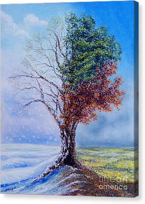 A Year In The Tree Of Life Canvas Print by Stanza Widen