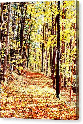 A Yellow Wood Canvas Print by Joshua House