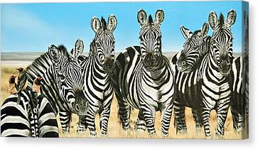 A Zeal Of Zebras Canvas Print