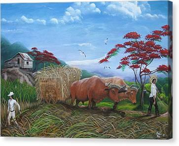 Aballarde  Y Melao Canvas Print by Toyo Perez