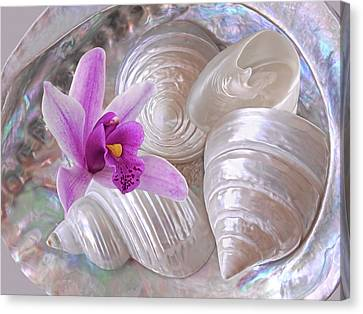 Abalone With Pearl Shells And Purple Orchid Canvas Print