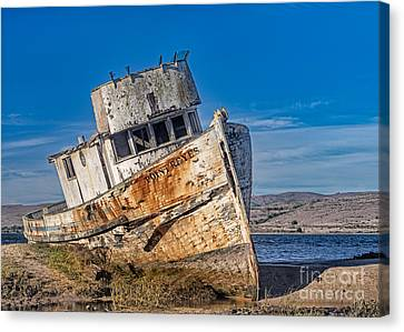 Abandon On Point Reyes Canvas Print by Jerry Fornarotto