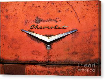 Abandoned 1958 Chevy Canvas Print by Arni Katz