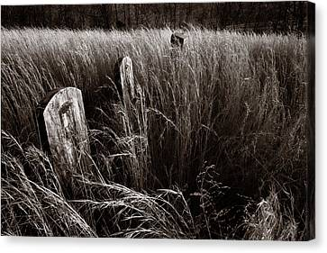 Abandoned Cemetery Midwest Canvas Print by Steve Gadomski