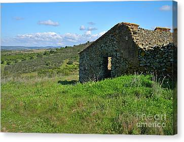 Abandoned Cottage In Alentejo Canvas Print by Angelo DeVal