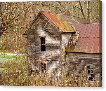 Abandoned House With Colorful Roof Canvas Print by Douglas Barnett