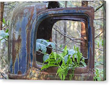 Abandoned Rusted Car - New Hampshire Forest Canvas Print