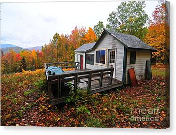 Canvas Print - Abandoned With A View  by Catherine Reusch Daley