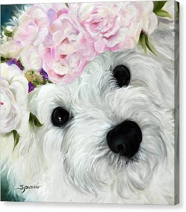 White Maltese Canvas Print - Abigail's Flowers by Mary Sparrow