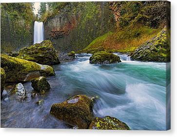 Abiqua Falls In Spring Canvas Print by David Gn