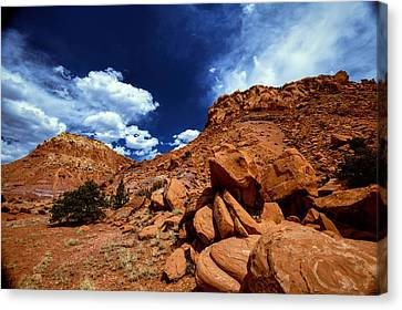 Abiquiu Sandstone Still Life Canvas Print by Jim Buchanan
