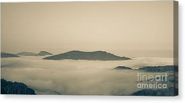 Above Everything Canvas Print by Gabriela Insuratelu